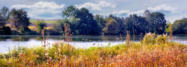 Jesienny krajobraz z różnorodną roślinnością nad rzeką przy słonecznej pogodzie