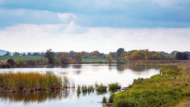 Jesienny krajobraz z rzeką i zaroślami trzcin