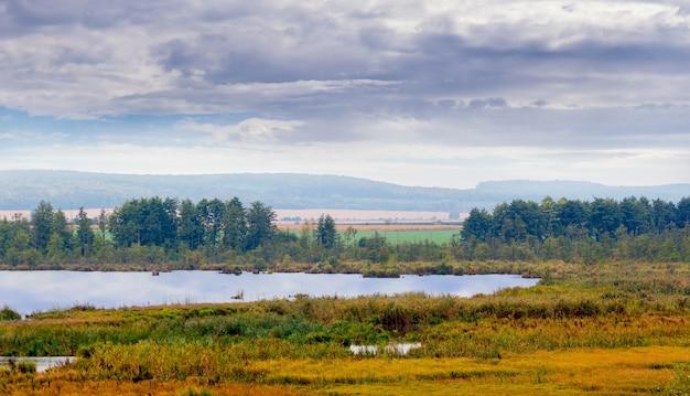 Jesienny krajobraz z rzeką, lasem w oddali i ponurym niebem