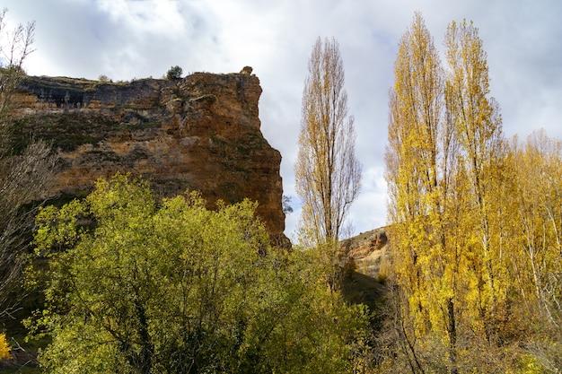 Jesienny krajobraz z wysokim klifem, liśćmi na ziemi i drzewami. segovia, hiszpania.