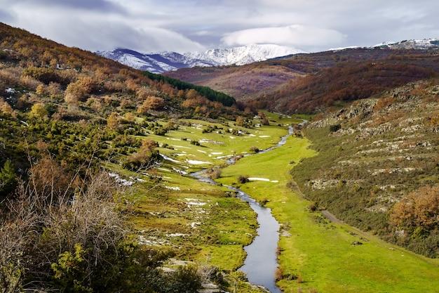 Jesienny krajobraz ze śniegiem, ścieżka opadłych liści z drzew i zaśnieżonych gór. park tejera negra.