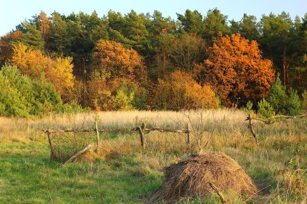 Jesienny krajobraz ze stogiem siana