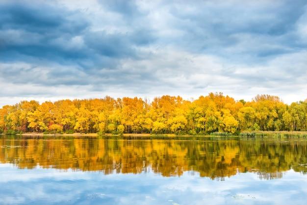 Jesienny las na brzegu rzeki z drzewami pomarańczowymi