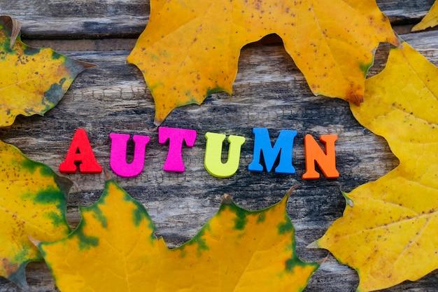 Jesienny napis kolorowymi drewnianymi literami na żółtych i zielonych liściach klonu widok z góry