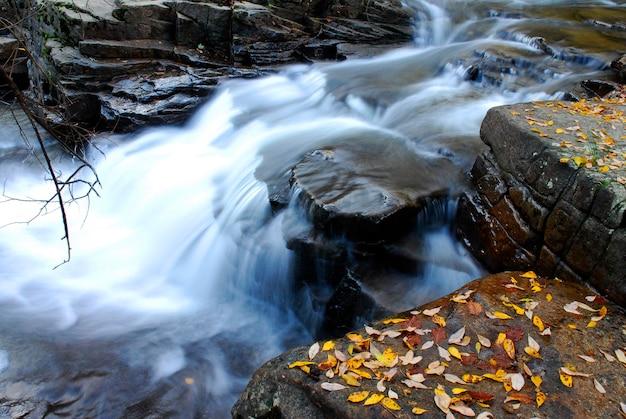 Jesienny obraz rzeki baias. park przyrody gorbeia. kraj basków. hiszpania