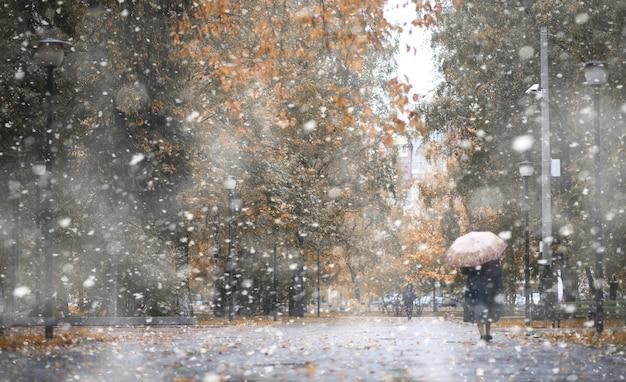 Jesienny park w dniach pierwszego śniegu