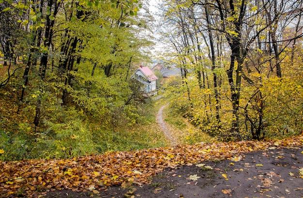 Jesienny park ze ścieżką do domów. jesienne liście spadające z drzew w parku przy drodze