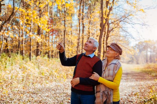 Jesienny spacer. starszej pary odprowadzenie w spadku parku. szczęśliwy mężczyzna i kobieta mówi i relaksuje na zewnątrz