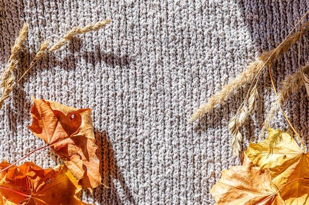 Jesienny tło. suszone pomarańczowe liście jesienne i rośliny leżące na białym swetrze z dzianiny. widok z góry płaskie miejsce kopiowania. transparent dziękczynienia. koncepcja zimna pogoda nastroju hygge. witaj, jesieni.