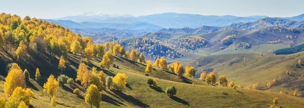 Jesienny widok panoramiczny.