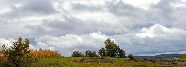 Jesienny wiejski krajobraz z roślinnością w ogrodzie przy pochmurnej pogodzie