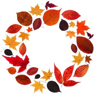 Jesienny wieniec z czerwonych i żółtych liści.