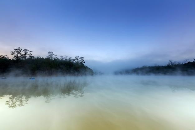 Jeziorny i sosnowy las na ranku czasie