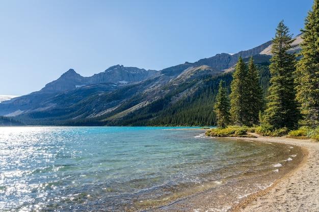 Jezioro bow lakeshore w słoneczny letni dzień bow glacier park narodowy banff canadian rockies canada