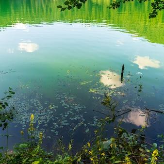 Jezioro czarne (karagol), park narodowy. savsat, artvin, turcja, - region morza czarnego