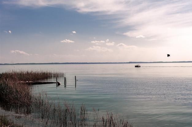 Jezioro garda z typową roślinnością wodną.