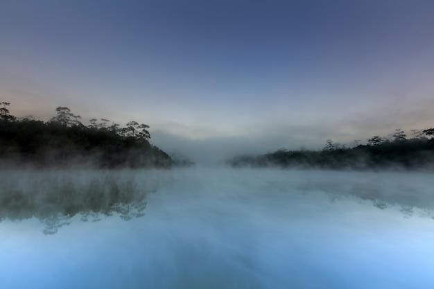 Jezioro i las sosnowy w porannym czasie o godz