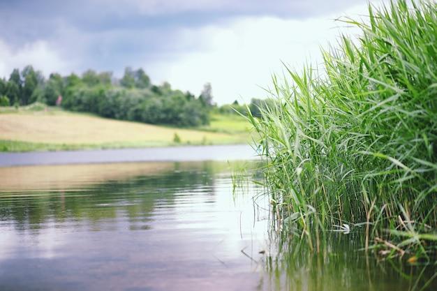 Jezioro krajobrazowe. tekstura wody. jezioro jest o świcie. ujście rzeki u zbiegu jeziora.