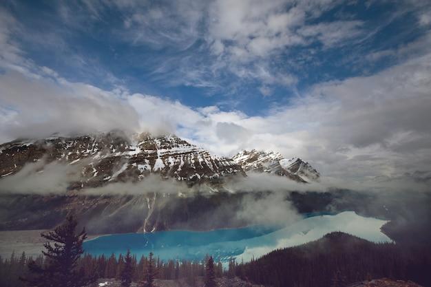 Jezioro peyto w parku narodowym banff, kanada