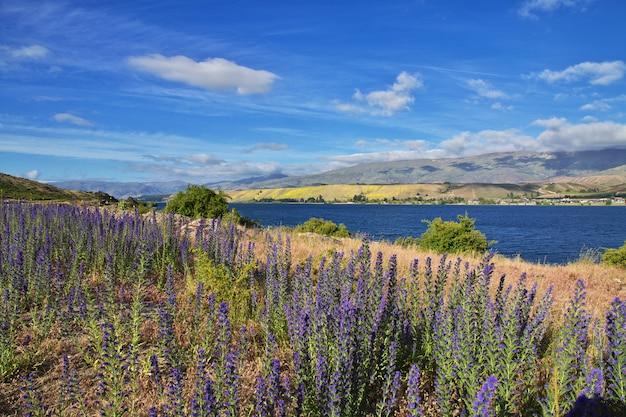 Jezioro południowej wyspy, nowa zelandia