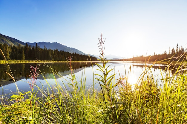 Jezioro serenity w tundrze na alasce