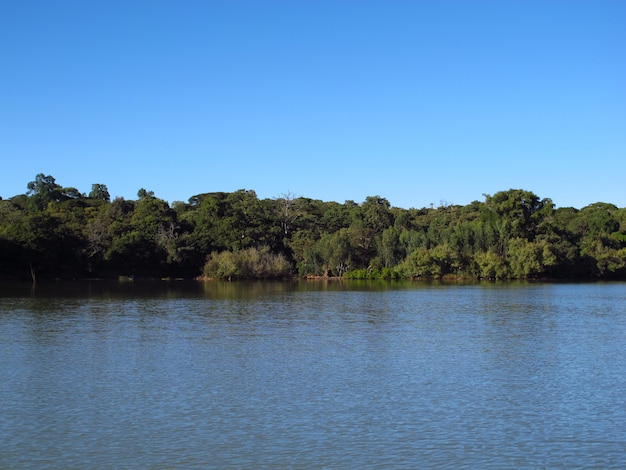 Jezioro tana w etiopii, w afryce