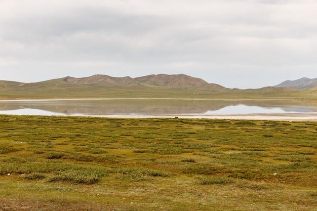 Jezioro terkhiin tsagaan znane również jako białe jezioro to jezioro w górach khangai w mongolii