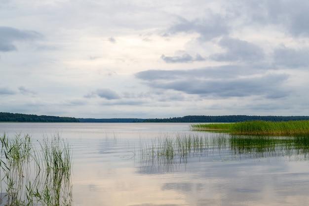 Jezioro usmas na łotwie. piękny naturalny krajobraz wodny. malowniczy widok z odbiciem. letnie jezioro
