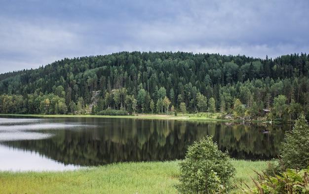 Jezioro w karelii. letnie naturalne krajobrazy w podróży. na północ od rosji