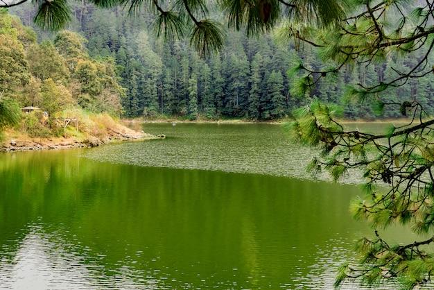 Jezioro w lesie z góra chmurnym dniem