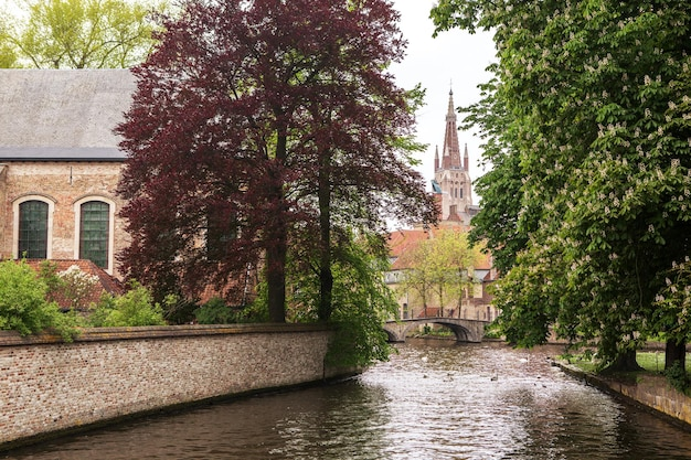 Jezioro w mieście begijnhof w brugii, belgia