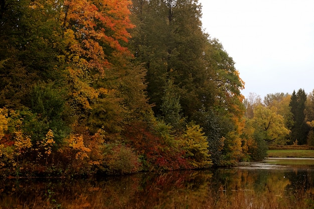 Jezioro w parku jesienią