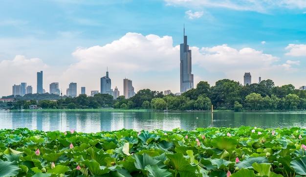 Jezioro xuanwu i skyline w nanjing