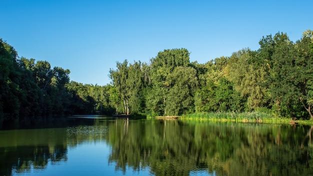 Jezioro z dużą ilością zielonych drzew odbite w wodzie w kiszyniowie, mołdawia