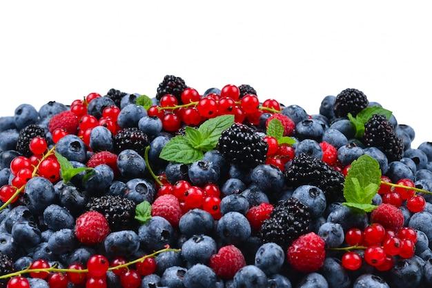 Jeżyna, malina, jagoda, czerwona porzeczka i mięta