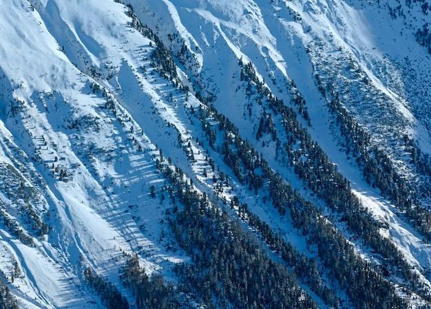 Jodłowy las na skalistym śnieżnym zboczu. sceneria z wyciągu kabinowego.
