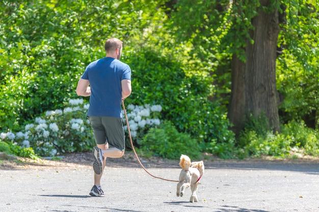 Jogger biegnący wzdłuż zbiornika central parku w nowym jorku. central park jest pełen aktywnych ludzi przez cały rok.