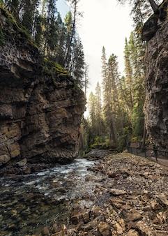 Johnston canyon ze strumieniem płynącym w skalnym klifie w parku narodowym banff, kanada