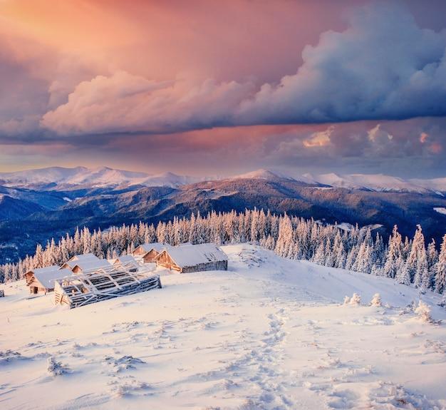 Kabina w górach w zimie. karpackie, ukraina europa
