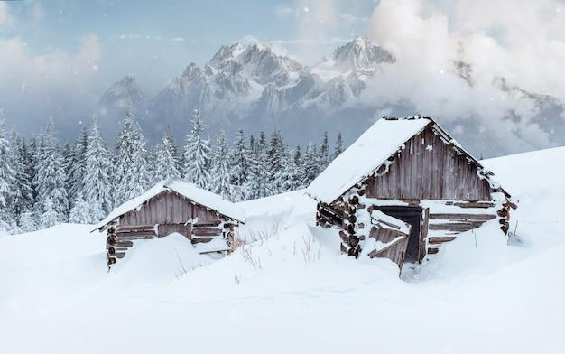 Kabina w górach w zimie. tajemnicza mgła. karpaty. ukraina, europa.