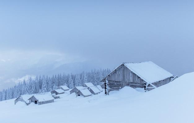 Kabina w górach w zimie. tajemnicza mgła. w oczekiwaniu na wakacje. karpaty. ukraina, europa