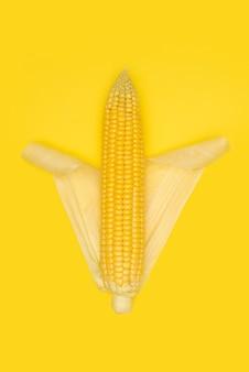 Kaczan kukurydzy na żółtym tle.