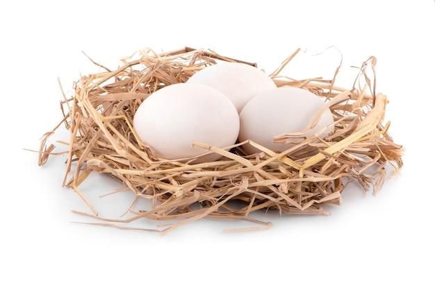 Kacze jajko z bliska na białym tle na białej powierzchni.