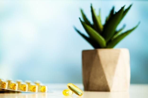 Kaktus i olej rybny w żółtych kapsułkach omega 3