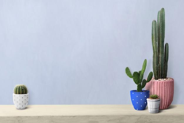 Kaktus na półce przy pustym tle ściany