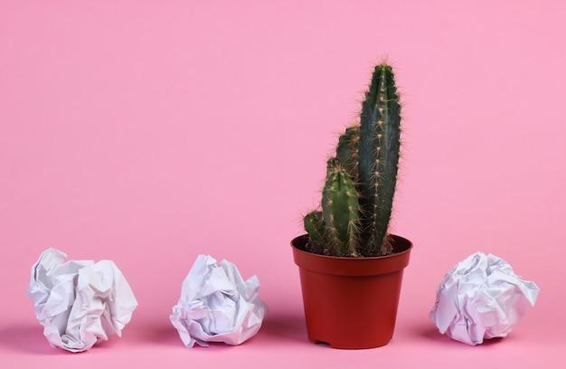 Kaktus w doniczce i zmięte papierowe kulki na różowym studio