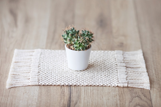 Kaktus w doniczce na dywaniku z naturalnego bawełnianego sznurka na rustykalnym drewnianym stole. ekologiczny styl z zieloną rośliną. nowoczesna makrama wykonana ręcznie. koncepcja dekoracji domu z dzianiny