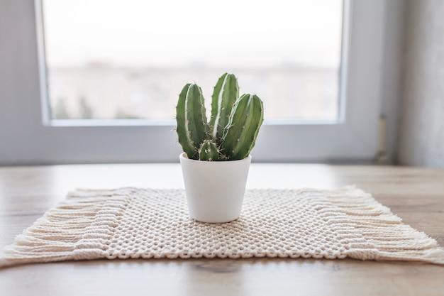Kaktus w doniczce na dywaniku z naturalnego sznurka bawełnianego na rustykalnym drewnianym stole. ekologiczny styl z zieloną rośliną. nowoczesna makrama wykonana ręcznie. koncepcja dekoracji domu z dzianiny