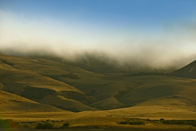 Kalifornijskie foggy hills