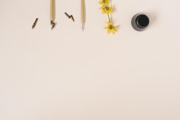Kaligrafia, ostry długopis, atrament, pióra, kwiat forsycji na beżowym tle z kopiowaniem miejsca